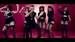 Official video Sani Danja ft Terry G -Basu Iyawa (Dem no fit)