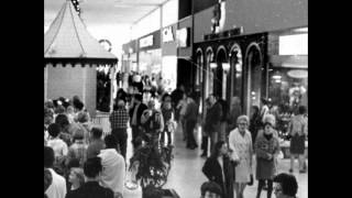 The History of River Roads Mall