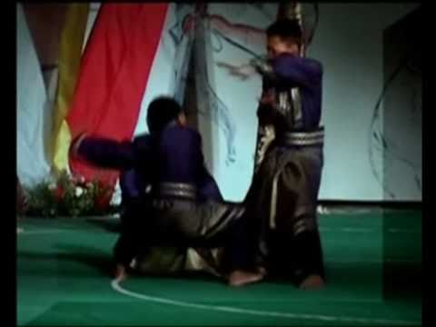 Compilation of several Pencak Silat videos Image 1