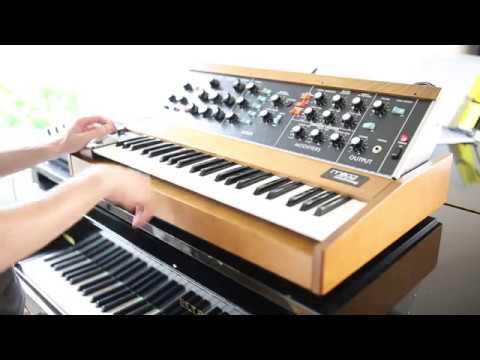 Minimoog Model D (2016) Funk Jam