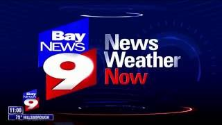 """Bay News 9 Live Coverage of """"No Postage Necessary"""""""