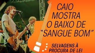 download musica Selvagens à Procura de Lei: slap slide e groove na música