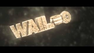 Wailoo Intro | By Dacho