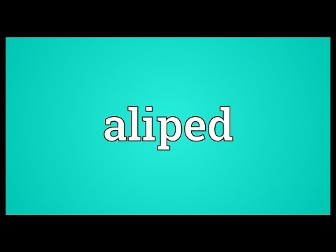 Header of aliped