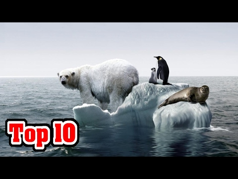 Top 10 Signs That GLOBAL WARMING Is NO LONGER A Debate