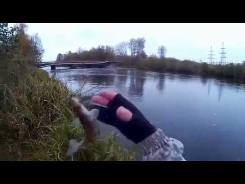видео рыбалка в шатуре
