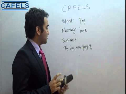 CAFELS (Basic English): Yap Meaning and Sentence in Urdu/Hindi-Canada Qualified