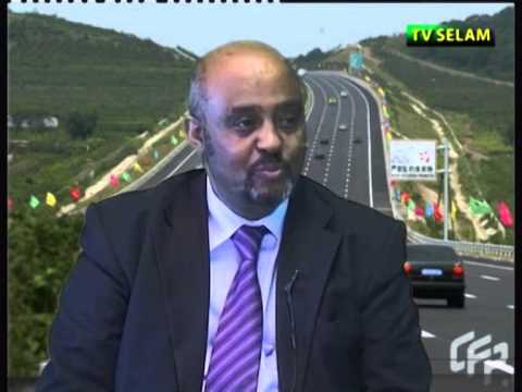 Interview With Ato Tadesse Haile, State Minister Of Industry Of Ethiopia Part 1 video