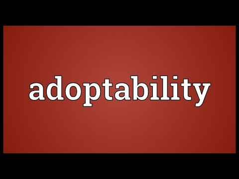 Header of Adoptability