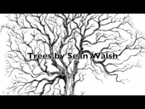 Trees by Sean Walsh