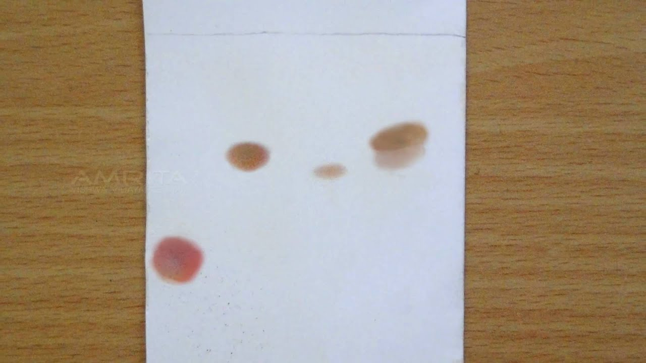 Paper chromatography lab report