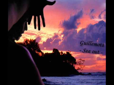 Guillemots - Sea Out
