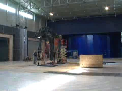 Apatosaurus Installation at Tellus Museum Video
