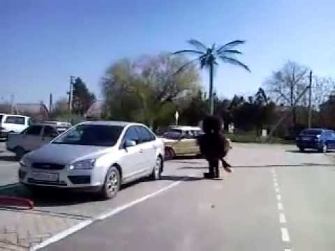 Песни дворовые - About a homyaCHEk