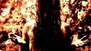 Watch Marduk Throne Of Rats video