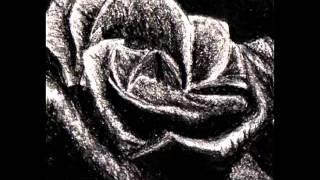 Marco Kloss- Rosenkrieg
