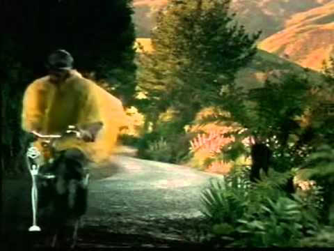 Nissan PATHFINDER R50 commercial