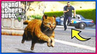 I played as a cat... Cops HATED me!! (GTA 5 Mods - Evade Gameplay)
