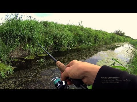 Таких злых в Ручье я не ожидал увидеть!!!Рыбалка на спиннинг.
