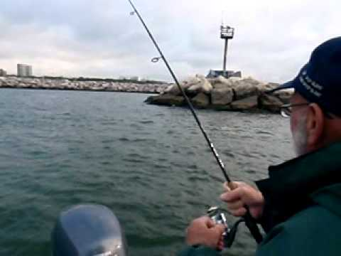 Milwaukee harbor, lake Michigan salmon fishing. Milwaukee brown trout. Wisconsin fishing guide