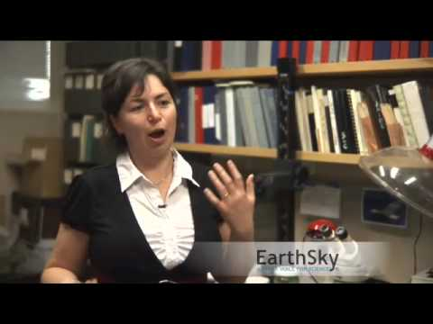 Miriam Goldstein on the Great Pacific Garbage Patch