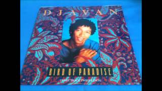 Bird of Paradise Album (Djavan, Miss Susanna)