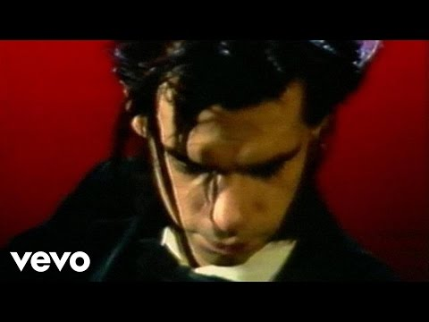 Nick Cave - The Singer