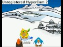 free club penguin accounts