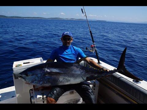 Tuna Fishing in Jezera, Croatia