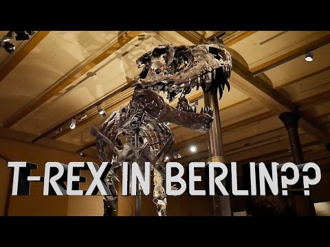 Finding A T-REX In Berlin??
