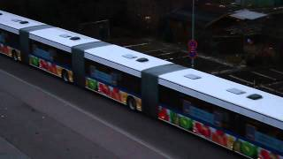 World longest bus!