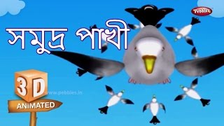 Seagull Rhyme in Bengali | বাংলা গান | Bengali Rhymes For Kids | 3D Bird Songs in Bengali | Poems