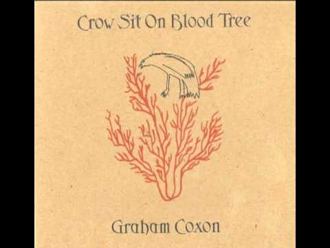 Graham Coxon - A Place For Grief