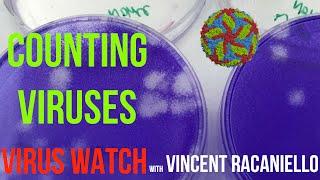 Virus Watch: Counting Viruses