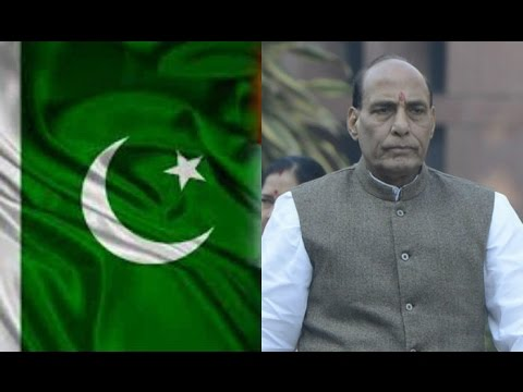 Pakistan Behind Kashmir Protests Claims Rajnath Singh