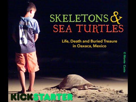Skeletons and Sea Turtles - Kickstarter Kickoff!