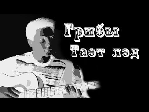 Как играть на гитаре: Грибы - Тает лед