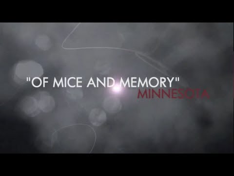 Alzheimer's Disease Research: Of Mice and Memory