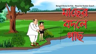 Bengali Comedy Video | Maacher Bodole Gaach | Popular Comics Series | Animated Comedy Cartoon