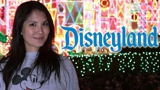 How Disneyland Gets Ready For The Holidays
