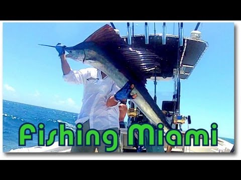 Fishing Miami