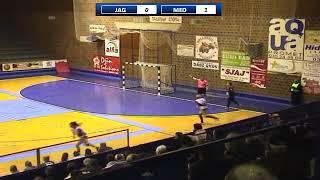 SRLSZ Playoff 2018-2019 / 1. kolo / ZORK Jagodina - ZRK Medicinar