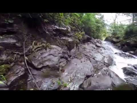 Lost Waterfalls Hike Boquete Panama Part 3