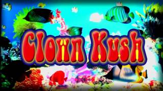 Clown Kush (2017) HD VHS - (Part 1/13) Intro Credits + Hippie Van