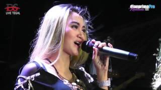 download lagu Diana Sastra Live  Desa Kedungsugih - Tegal  gratis