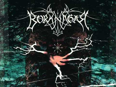 Borknagar - The Black Canvas