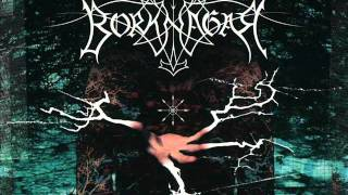 Watch Borknagar The Black Canvas video