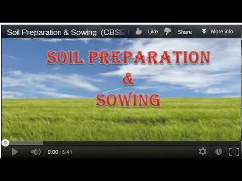 Soil Preparation & Sowing  (CBSE Class VIII)