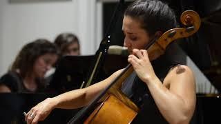 Sonate de Johannes Brahms en mi mineur pour violoncelle et piano (extraits)