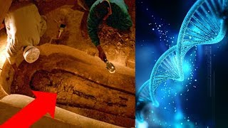 Ancient Egypt - Egyptologists DEBUNK Themselves! Egyptian DNA - Lost Ancient High Technology